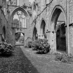 abbaye de beauport (XIII)