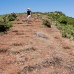 Pico Ruivo do Paul (1640m)